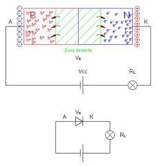 57fd80942 ... Diodo en polarización inversa. diodo4, diodo5
